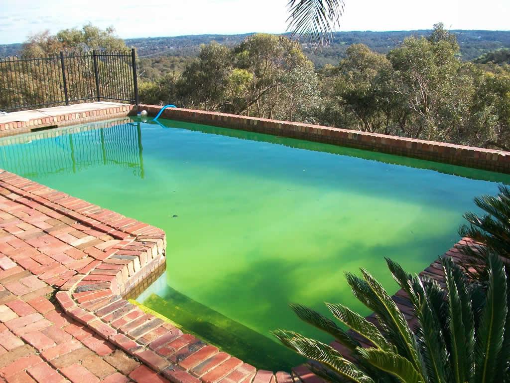 Swimming pool renovation wattleglen aquadreamz for Pool renovations